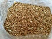 Пшеница 2-3 класс