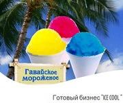Новый летний бизнес 2012 Гавайское мороженное Ice Cool
